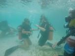 Under-water skills tests
