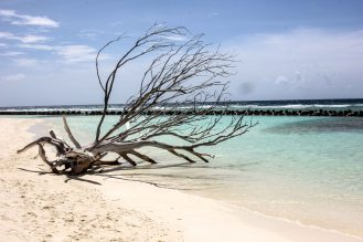 Maldives LoRes-25