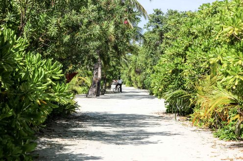 Maldives LoRes-27