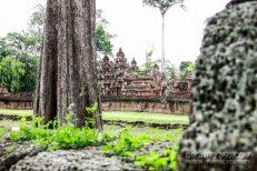 Cambodia 2015 LowRes-139