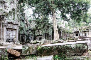 Cambodia 2015 LowRes-157