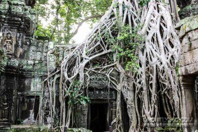 Cambodia 2015 LowRes-160