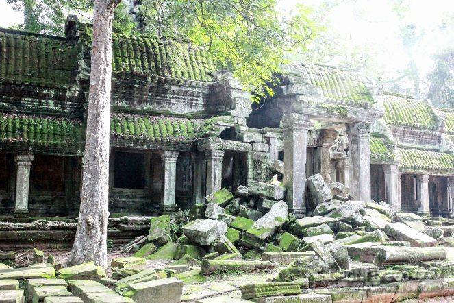 Cambodia 2015 LowRes-170