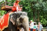 Cambodia 2015 LowRes-200