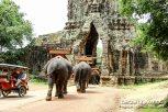 Cambodia 2015 LowRes-201