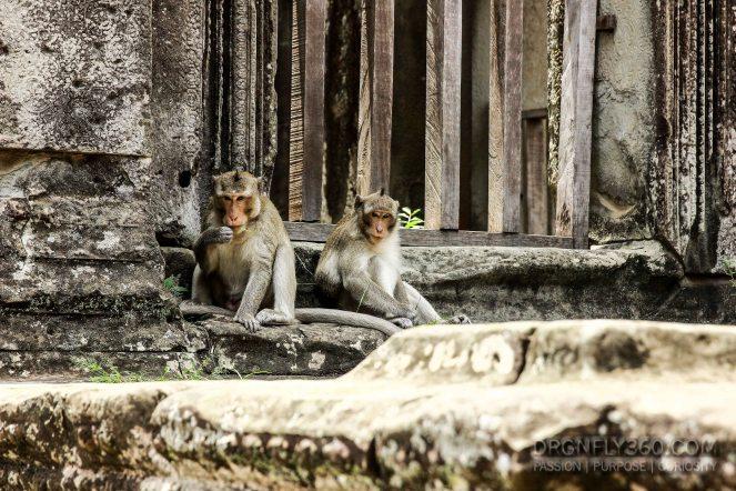 Cambodia 2015 LowRes-58