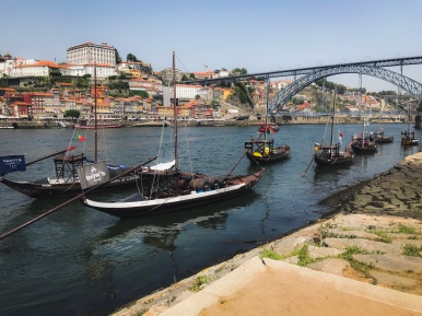 View of the Douro River from Sandeman,